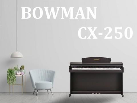 CX250 SR