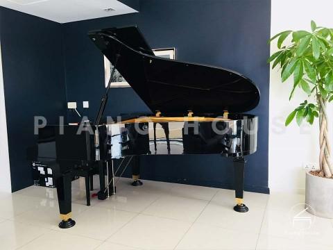 PIANO APOLLO A30