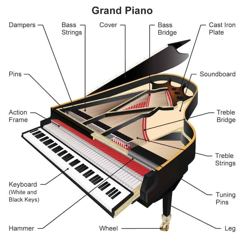 cấu tạo đàn grand piano