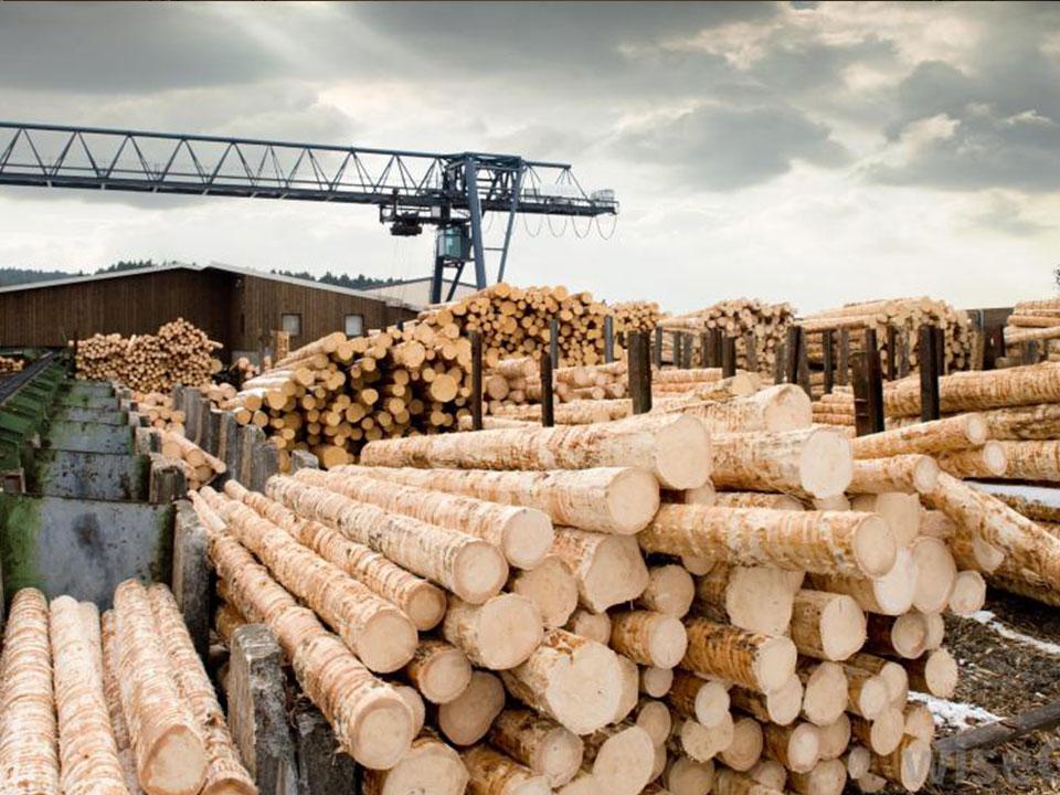 gỗ sản xuất đàn Piano