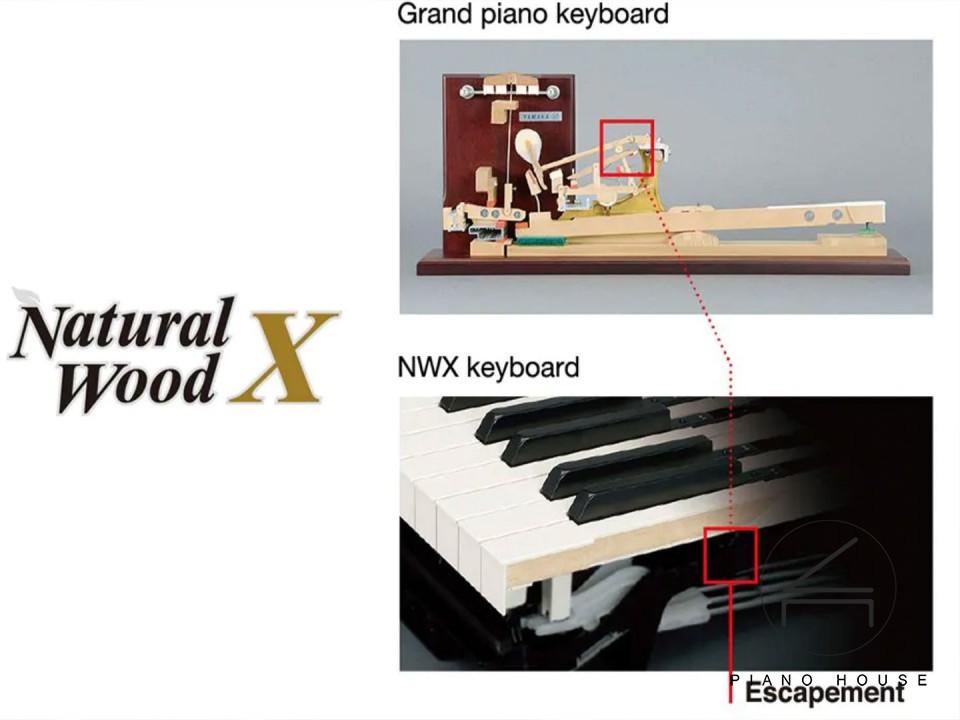 hệ phím gỗ tự nhiên nwx yamaha piano